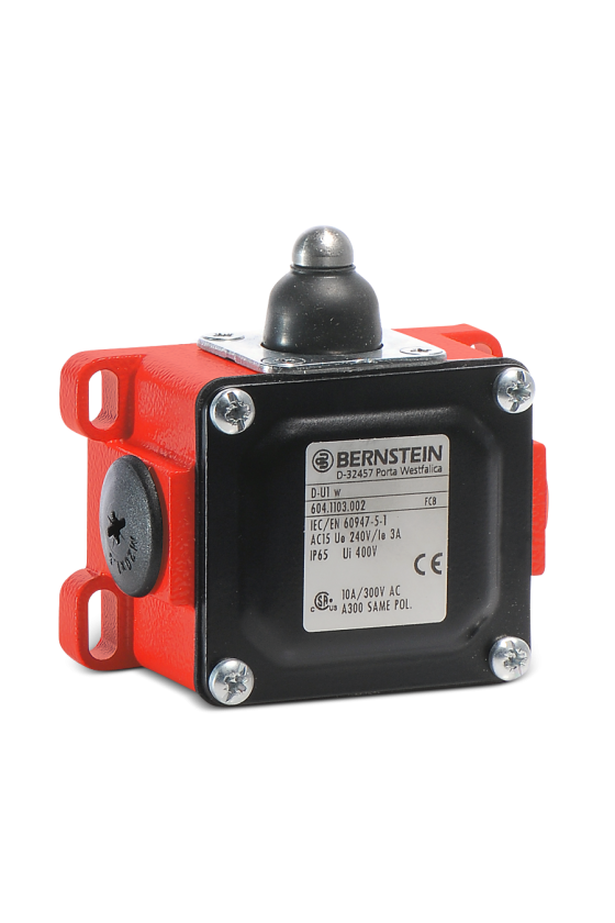 6042918118 interruptor de límite D-A3Z RW  B D