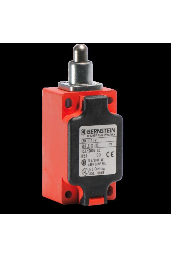 6081117002/Interruptor de límite Tipo ENK  ENK-U1Z RIW /B