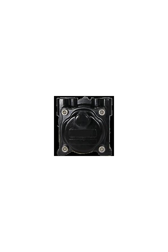 63252NS Filtro/Regulador rango 2-120psi 1/4 IN  NPT con tornillo