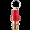 20022  Válvula de seguridad con cuerpo en bronce.(1/4   NPT 200 psi)