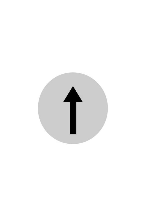 218305 M22-XDL-W-X7 Lente de botón, plano blanco, símbolo de flecha