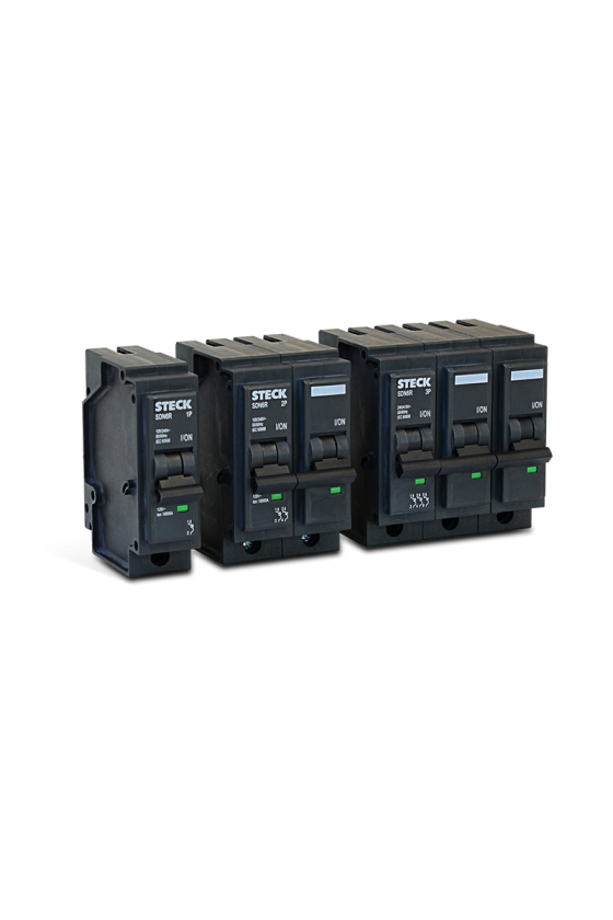 SDN61R30 Interruptor...